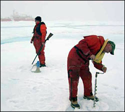 John Kemp surveys icefloe