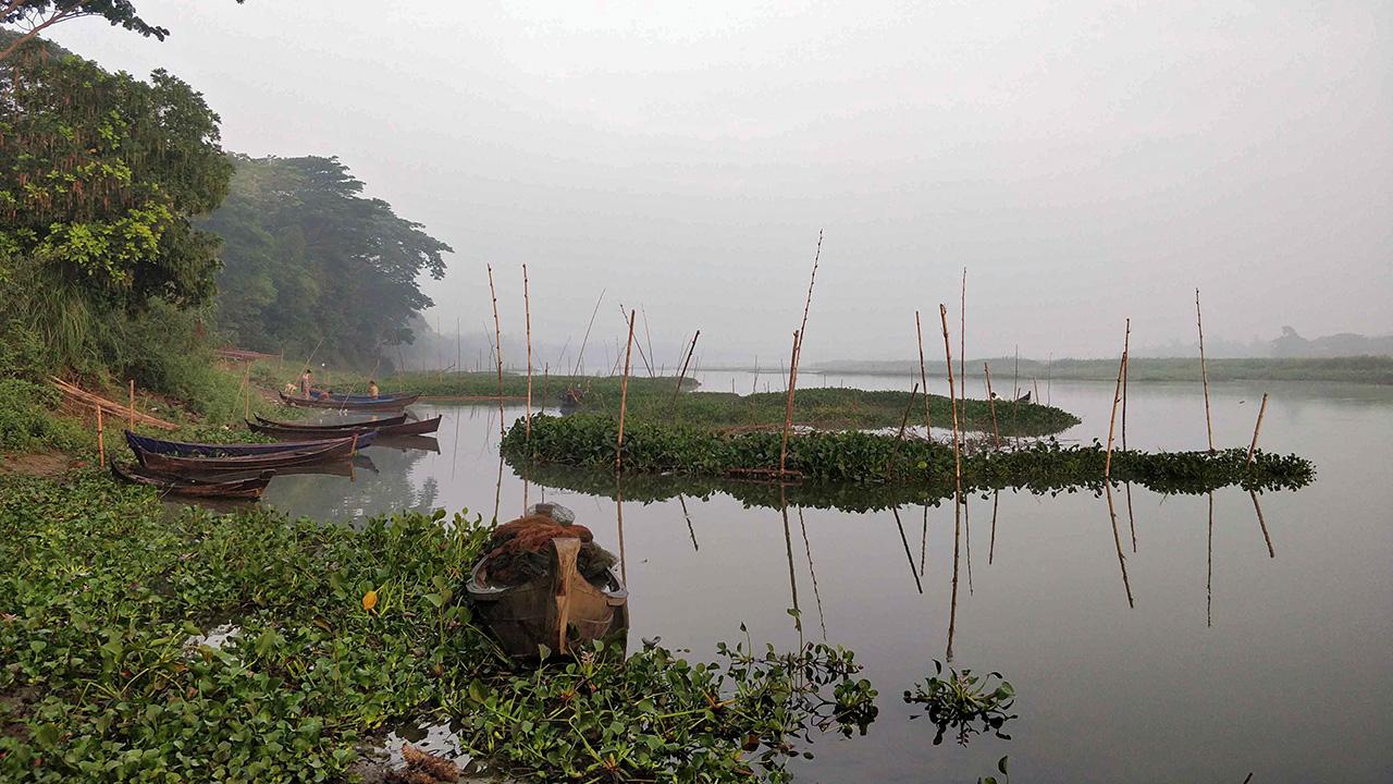 Ayeyawady River delta