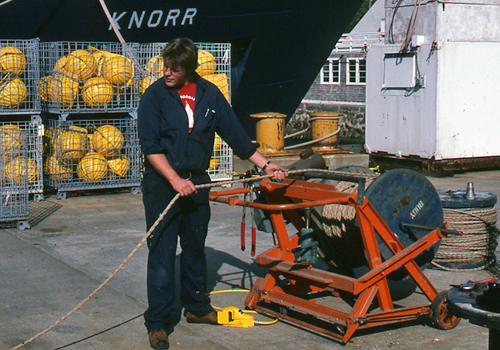 Running a mooring line through human hands as it's being reeled back aboard ship helps locate cuts, holes, and gouges caused by fish.