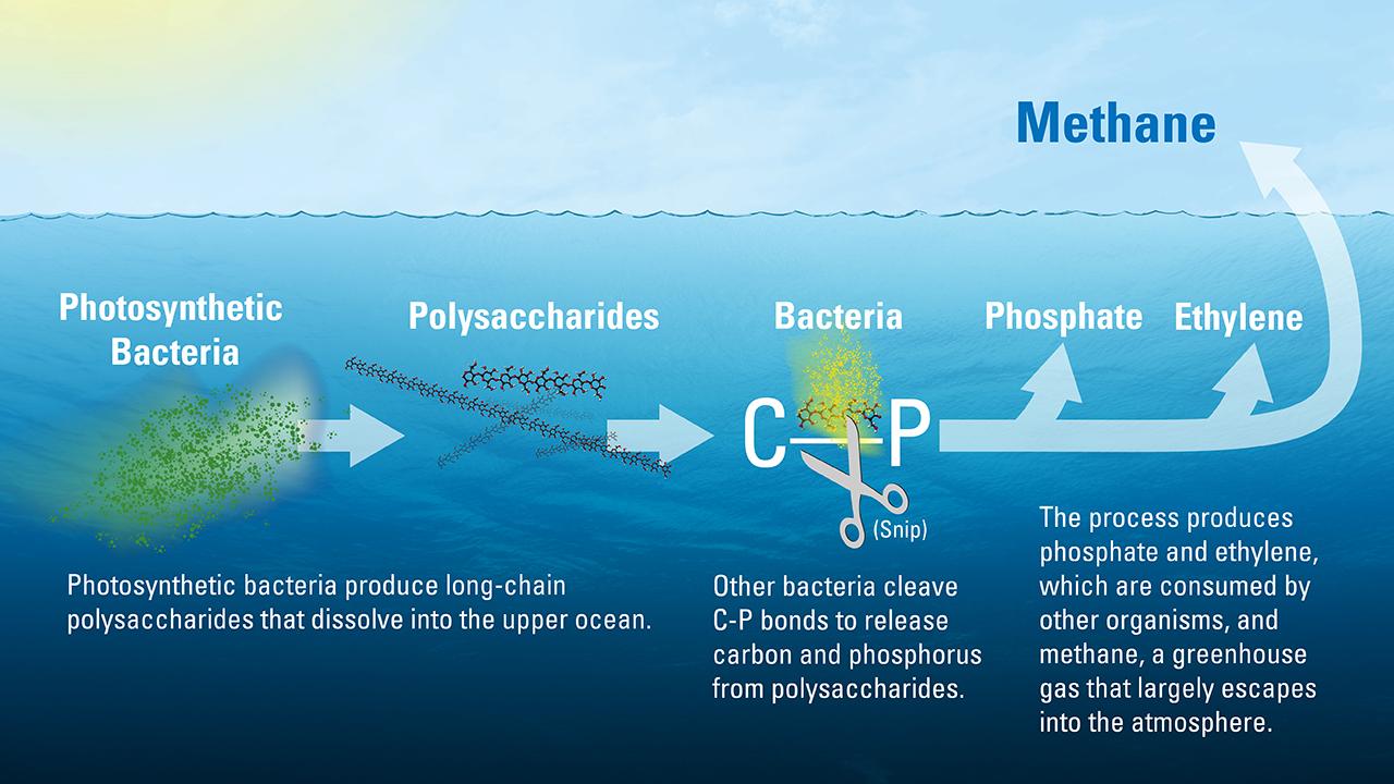 Methane mystery