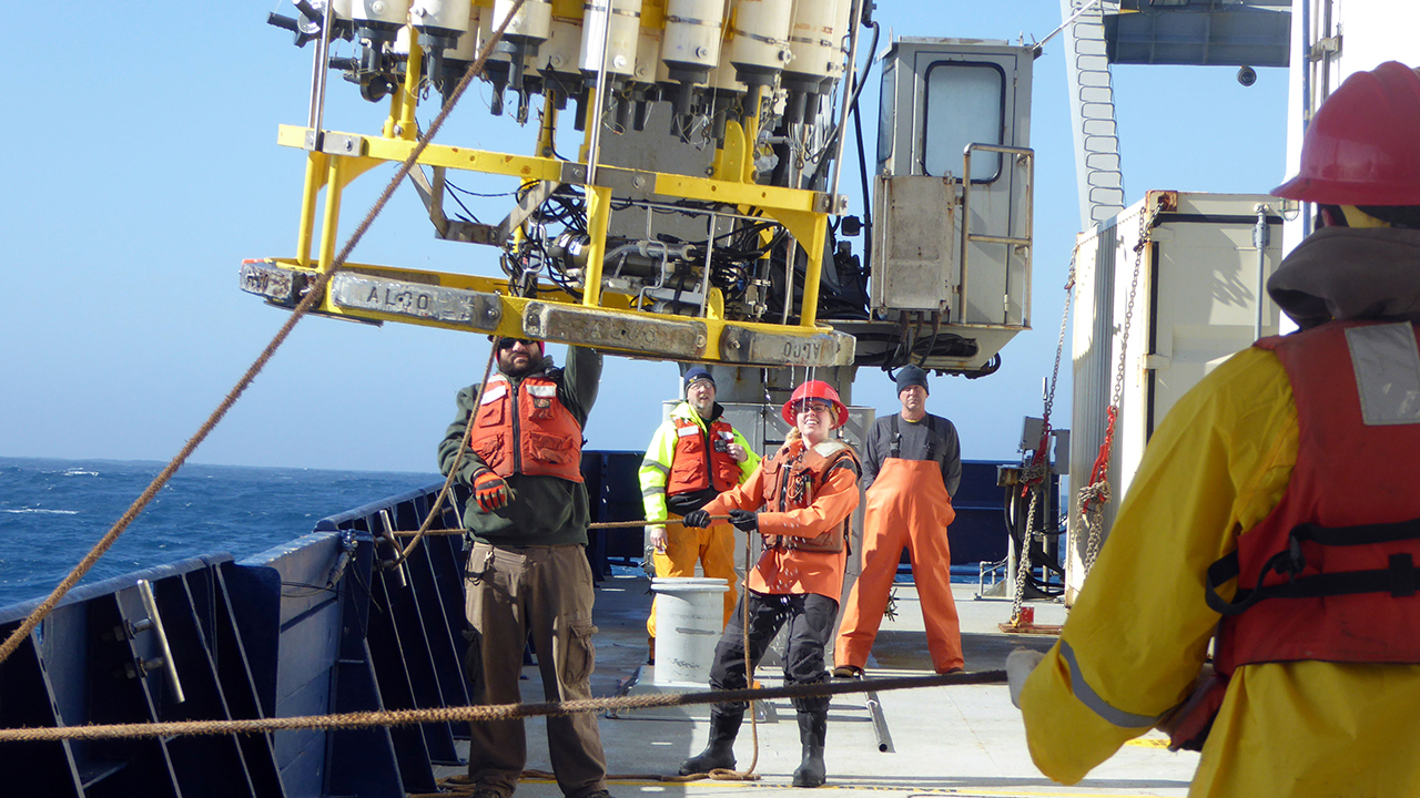 CTD recovery