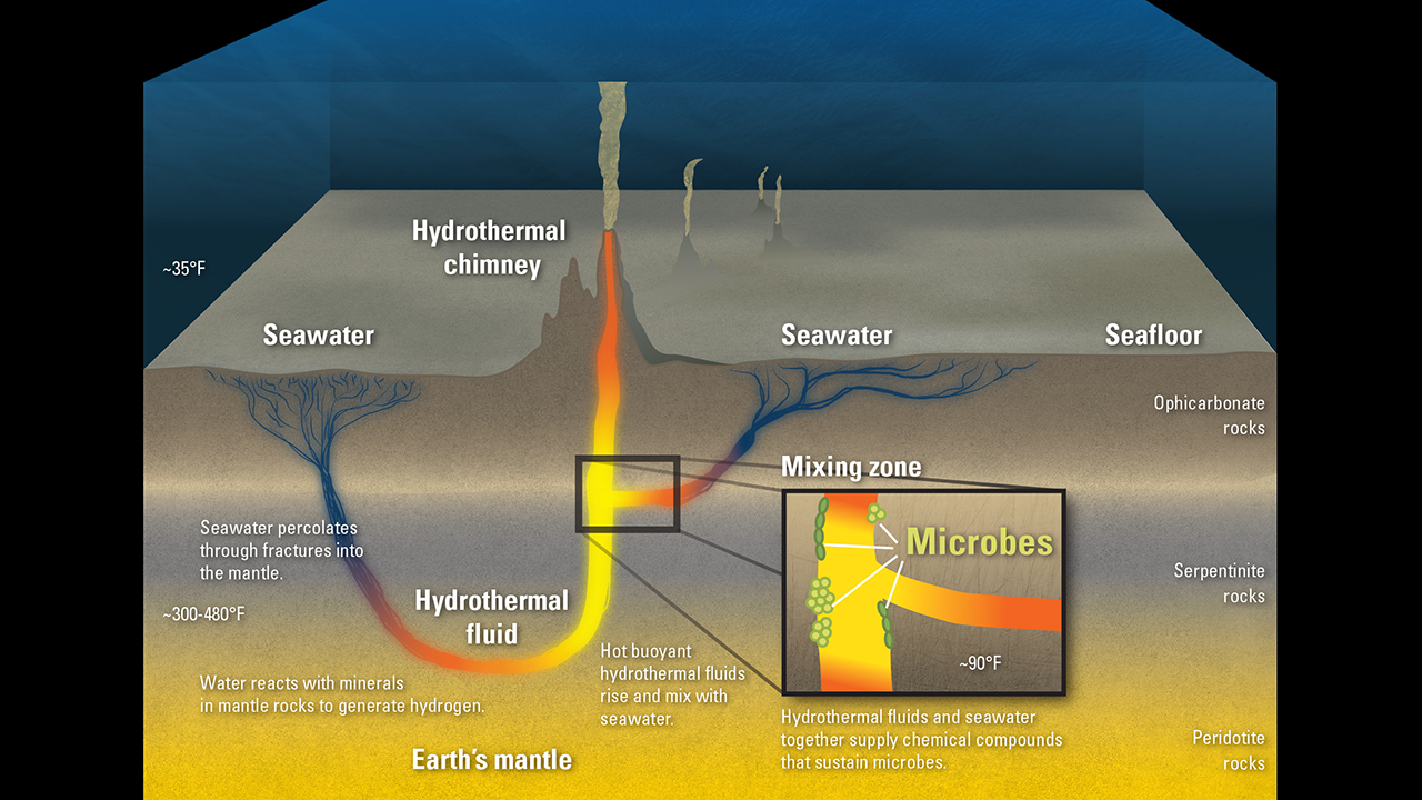 Illustration of microbes below seafloor.