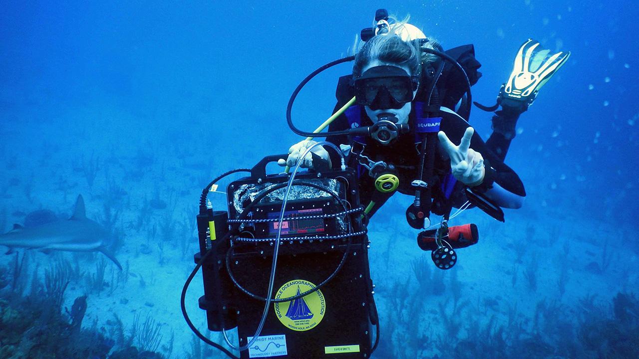 DISCO sensor with diver