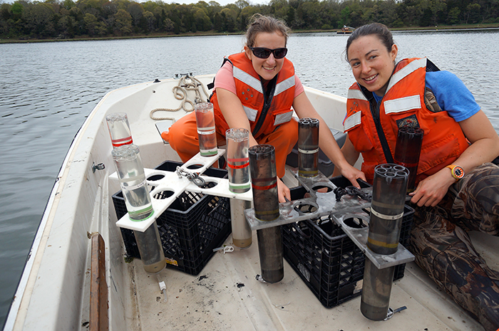 Sediment traps in Nauset Marsh