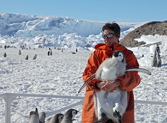 Tagging penguins
