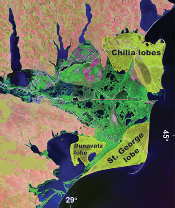 lobes of the delta