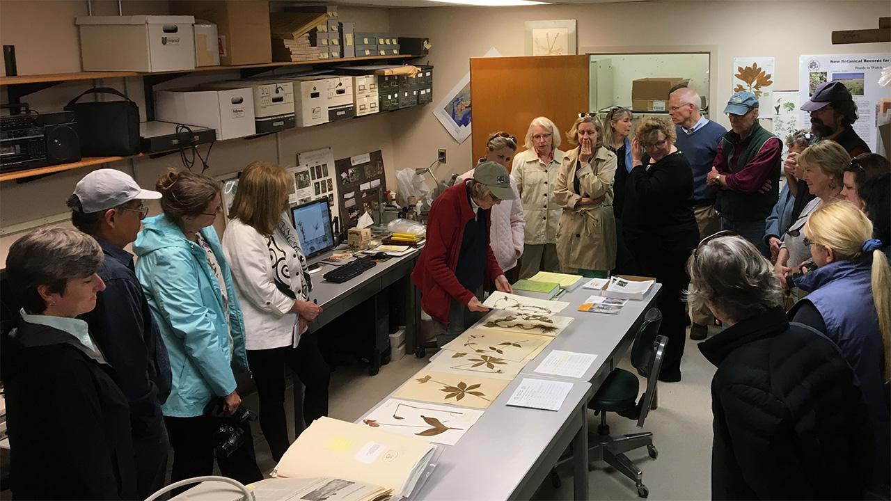 Herbarium tour