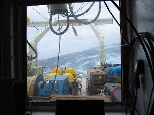 Oceanus Fantail in Rough Weather