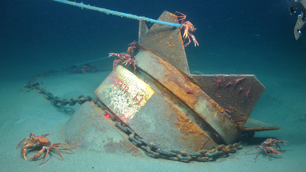 seafloor anchor with hauling line