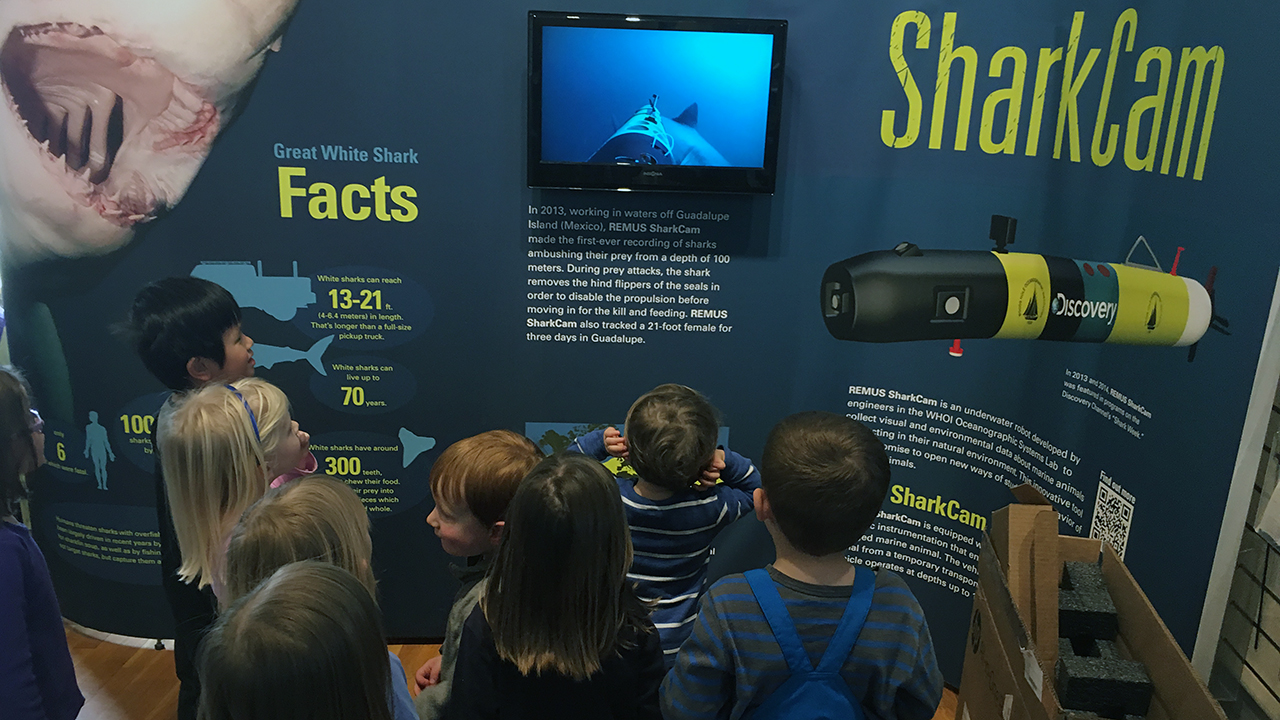 kids looking at SharkCam in Exhibit Center