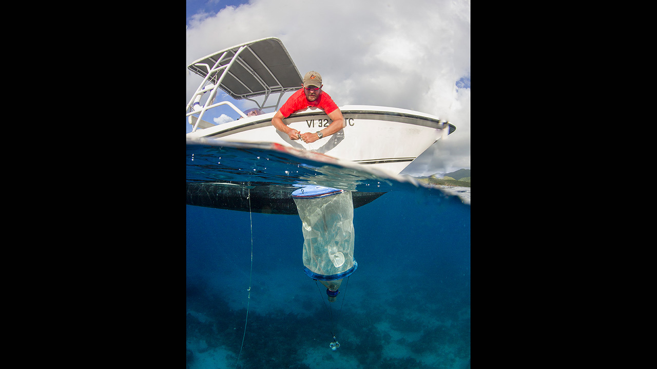 research pulls trap from water