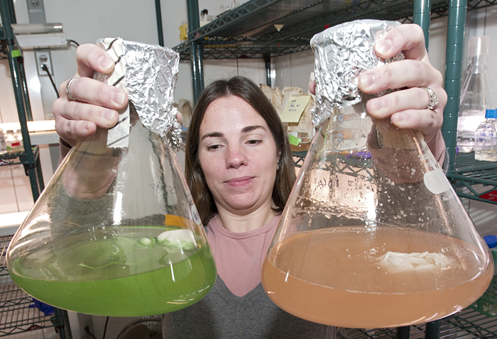 Kristen Rathjen with microbe cultures used in CF study