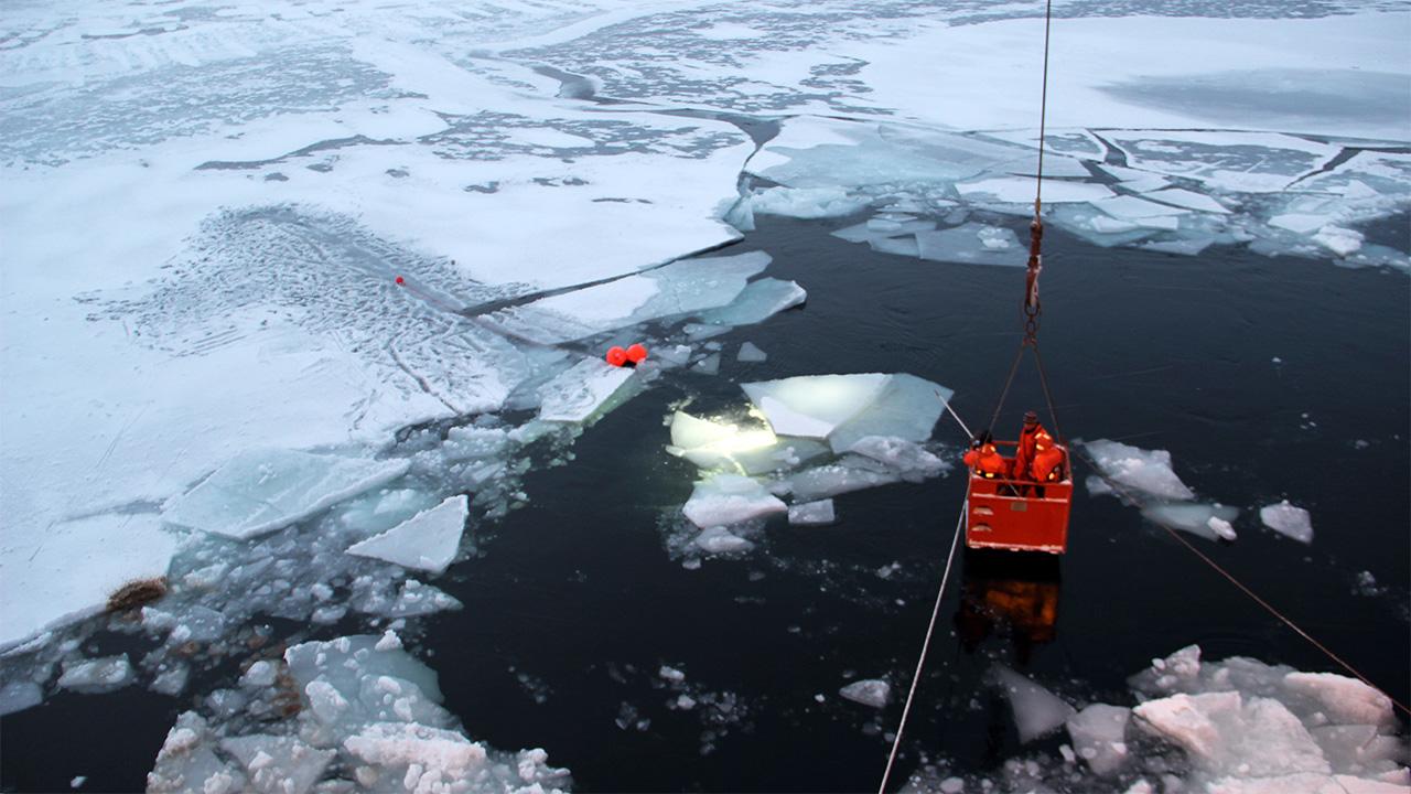 Nereid Under Ice recovery