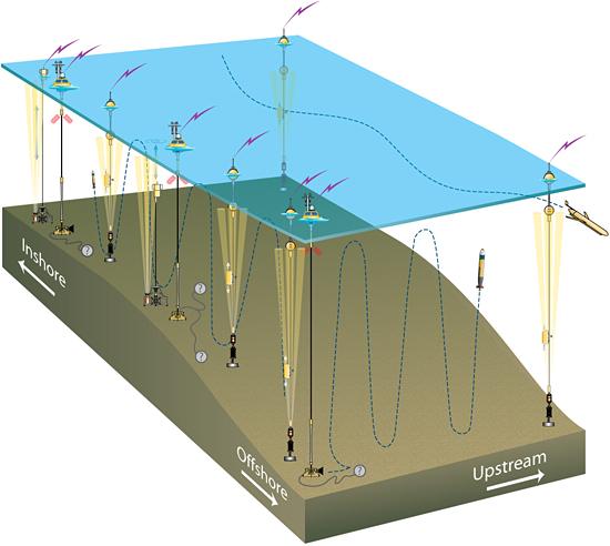 Pioneer array schematic