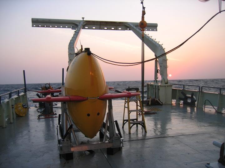 Sentry with Sunset on Oceanus