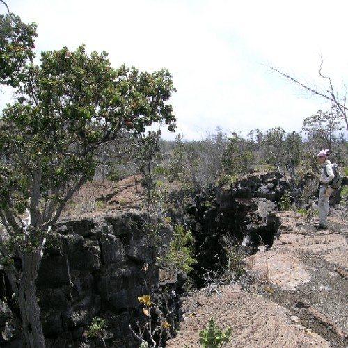 This fissure in the Kau Desert, west of Kilauea?s summit illustrates the deformation that is occurring within the volcano. The South flank of Kilauea is slowly sliding towards the sea.