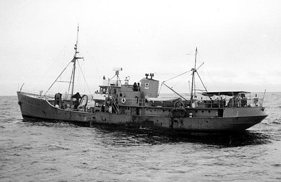 Albatross III