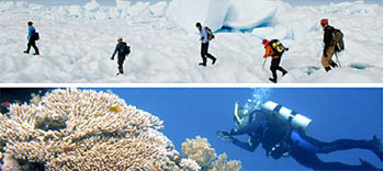 Trekking across polar ice or diving into tropical water