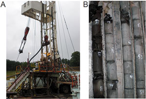 microbial generation of natural gas from the organic-rich Antrim Shale