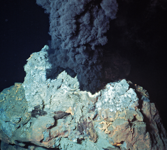 an analysis of hydrothermal vent Hydrothermal vents are where fluids flow from rock fractures in  hydrothermal vent squat  metagenome analysis of an extreme microbial symbiosis reveals .