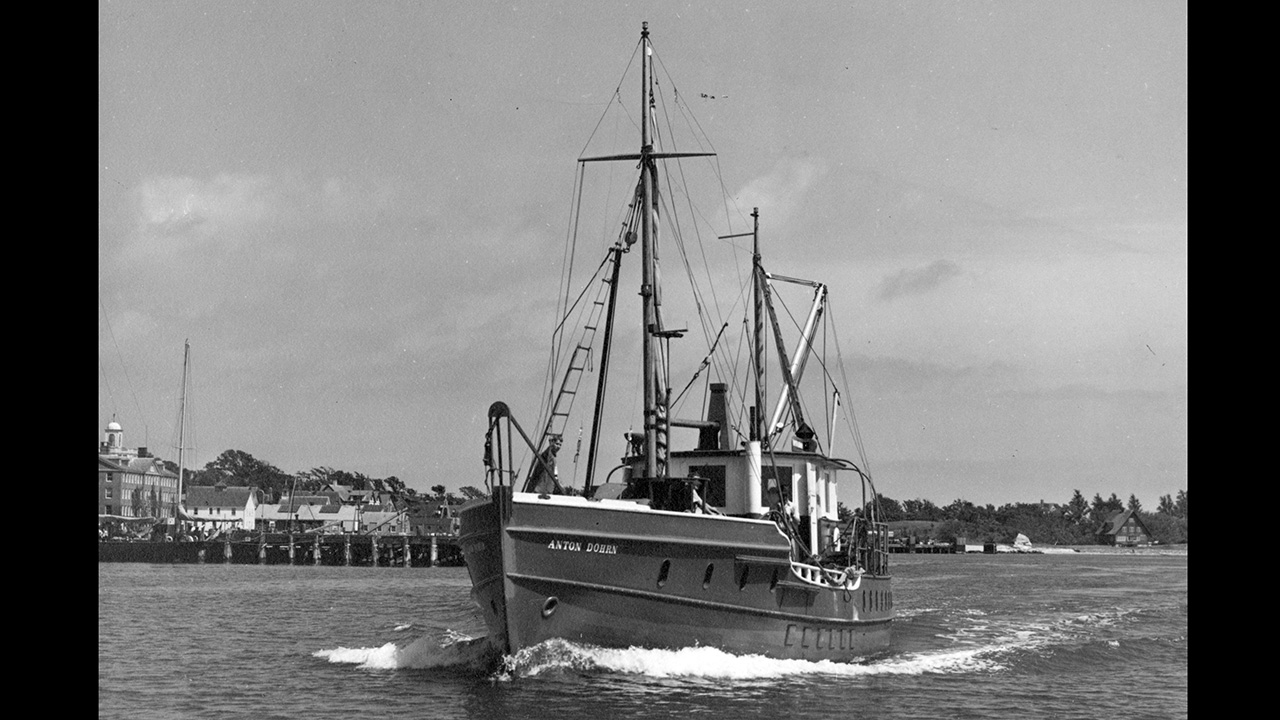 research vessel Anton Dohrn