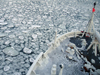 Sea Ice in the Bering Sea
