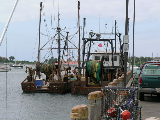 trawl vessels at Woods Hole