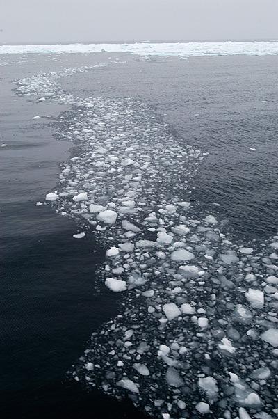 Brash ice