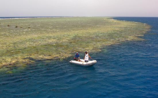 Dive boat at coral reef