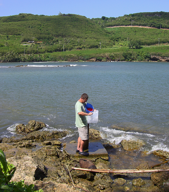 Paul Henderson collecting sample