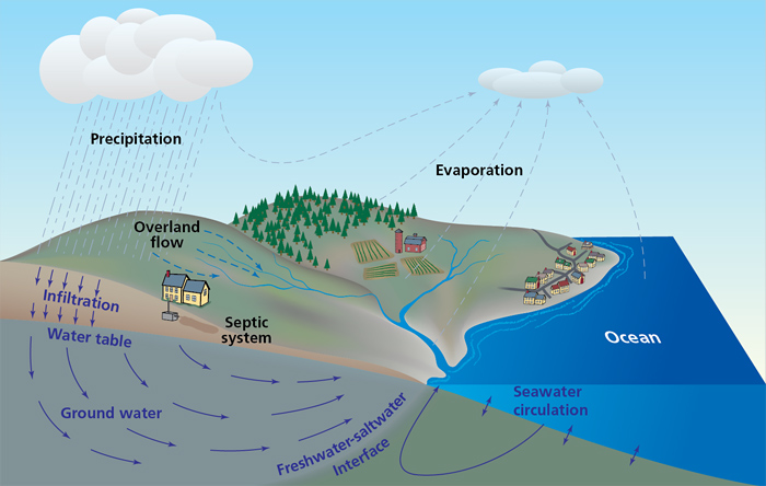 Schematic of the hydrologic cycle in coastal zones