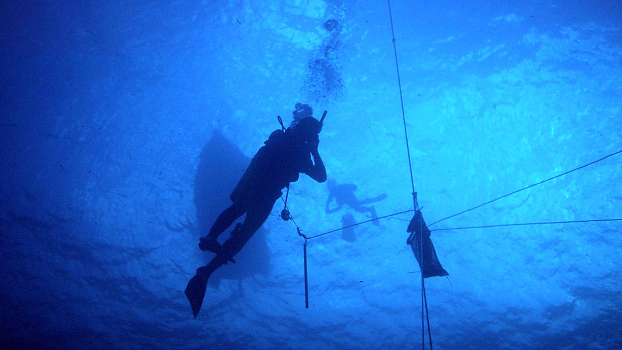 divers in the open ocean