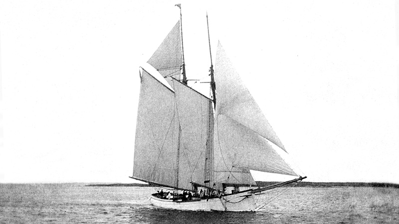 Grampus sailboat