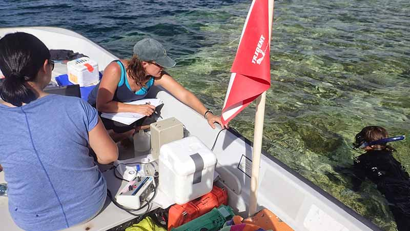 scientists in boat while another dives over coral