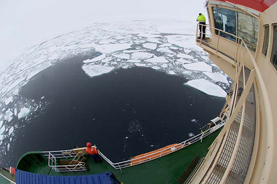 Looking down from the ship, scientists and crew look for Puma.