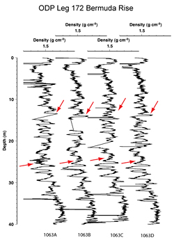 Figure 2.  density_plot_odp.gif  GRAPE density records from ODP Site 1063.