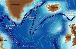 Subpolar seas bordering the North Atlantic