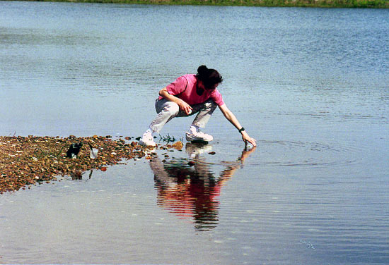 Katrina Edwards collects water samples from Salt Pond in Falmouth, MA