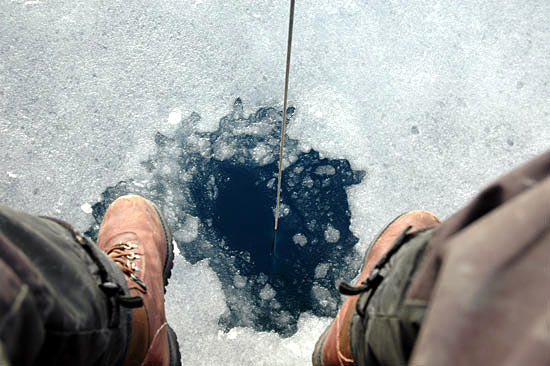 Peter Winsor peers into a hole cut into the ice
