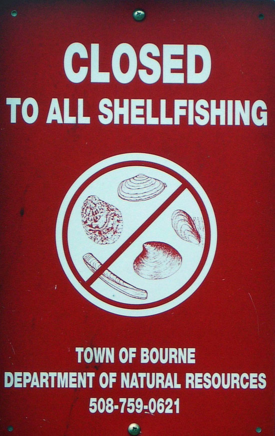 Shellfish harvesting closure sign, Bourne, MA.
