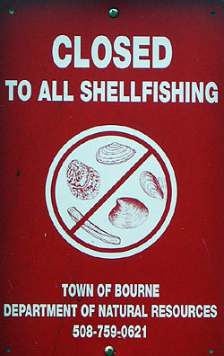 Shellfish harvesting closure sign, Bourne, MA.