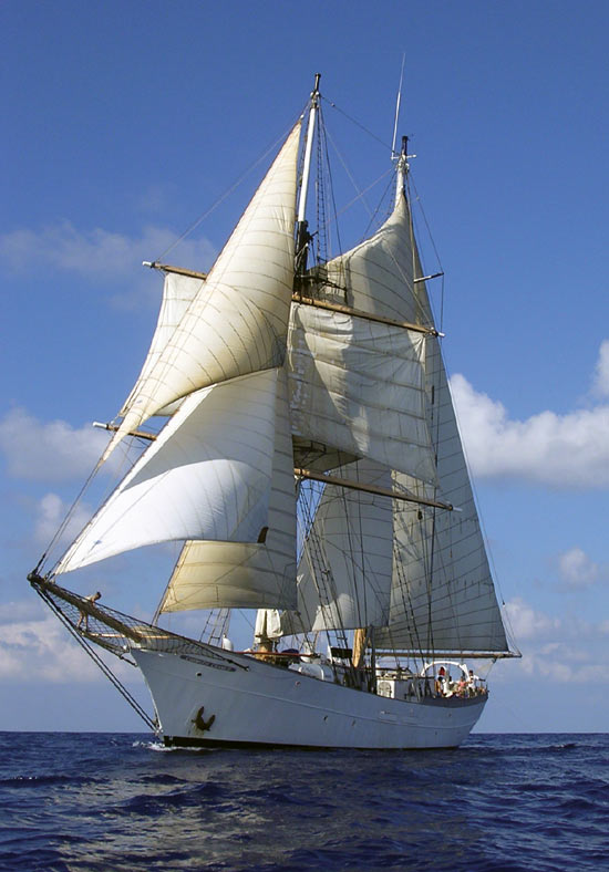The SSV Corwith Cramer under full sail.
