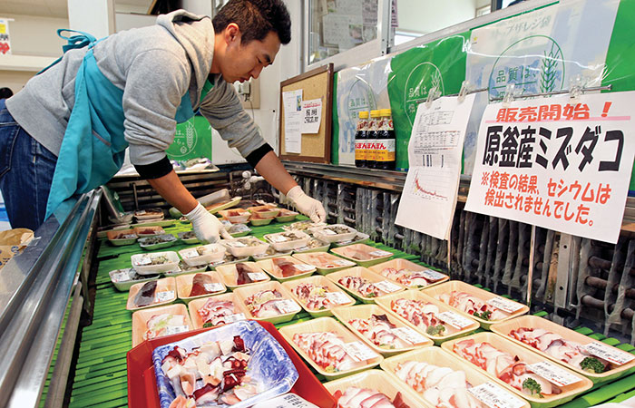 The first trial sale of octopus caught off Fukushima began in June 2012, 15 months after the Dai-ichi nuclear plant explosion.
