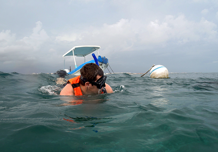 Paul Henderson snorkels to look for corals