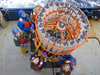 Ocean acidification team