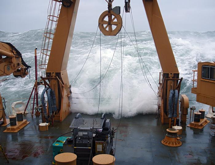 Healy swells