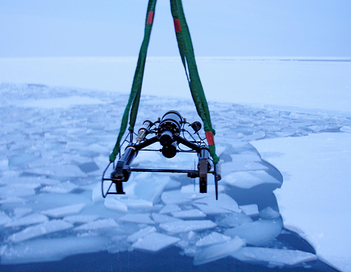 Video Plankton Recorder in the Arctic