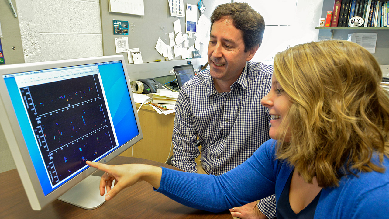 Mark Baumgartner and Julianne Gurnee view data