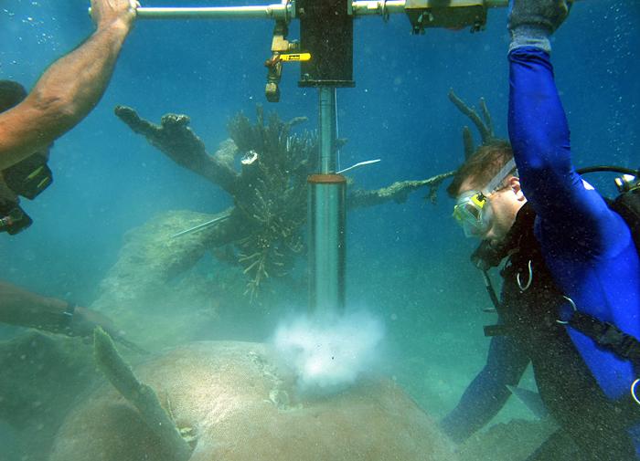 Divers drill a coral core