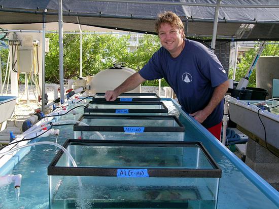 Konrad Hughen at Mote Marine Lab on Summerland Key.